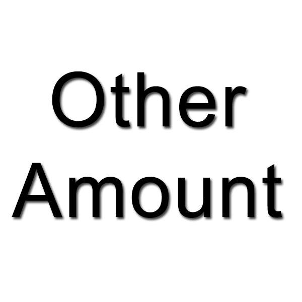 Other Amount